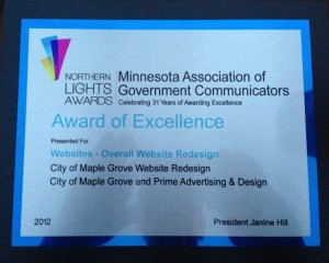 Northern Lights Award of Excellence